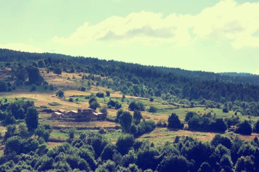 Es erinnert mich etwas an meine Heimat, den Schwarzwald.